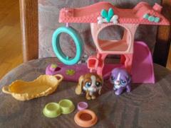 Littlest Pet Shop Hunde-Hütte mit Spielzeug